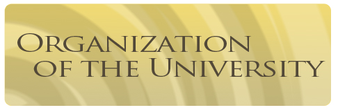 organization of the university