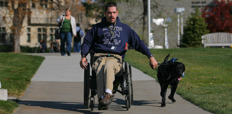 Student in wheelchair with assistance dogs