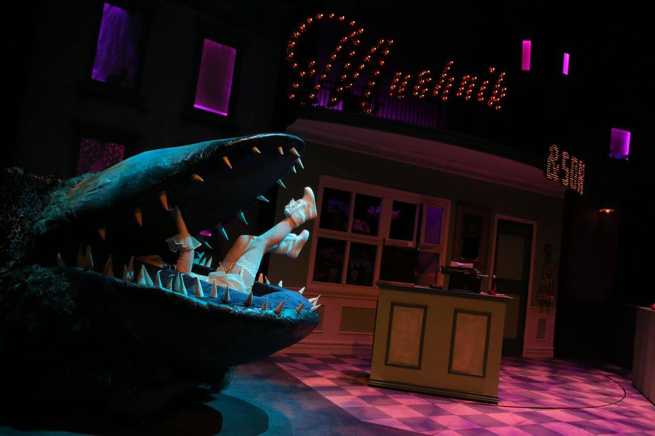Little Shop of Horrors 2016
