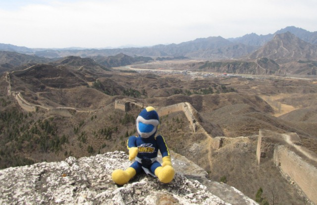 Rocky at the Great Wall of China
