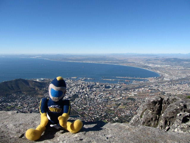 Rocky in Cape Town South Africa