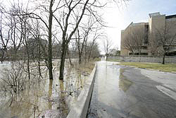 Ottawa River breaching bank behind Carlson Library