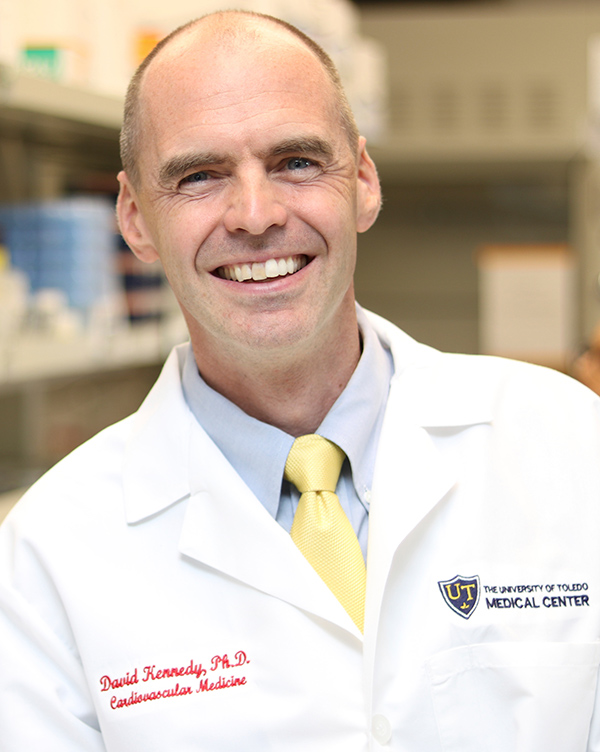 David Kennedy, PhD - College of Medicine and Life Sciences