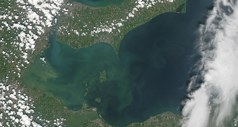 Lake Erie bloom