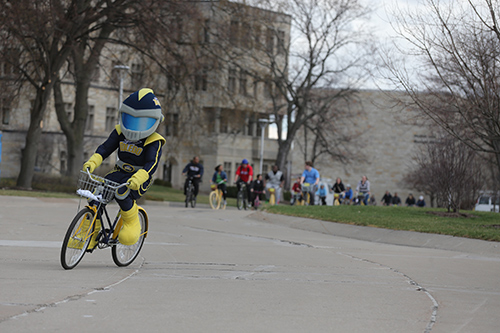 Mascot Rocky riding a bicycle on campus