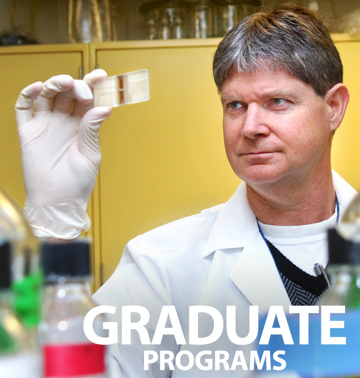 Learn more about Graduate Programs
