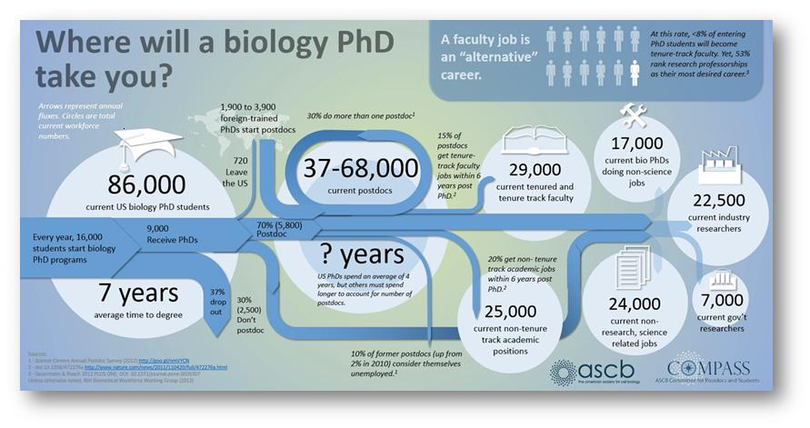 Biology PhD Career Path