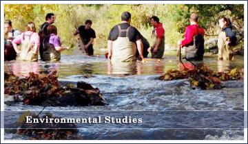 Brown environmental studies thesis