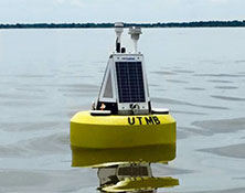 Photo of UT buoy