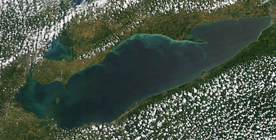 Modis imagery of algal blooms in Lake Erie