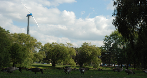 Scott Park wind turbine